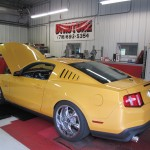 Customers Yellow Stang