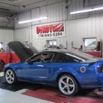 Customers Mustang